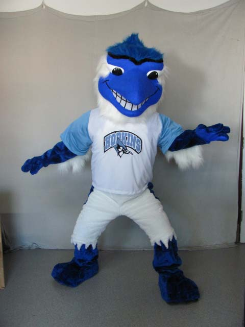 how to clean a mascot costume