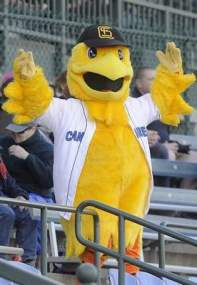 Cagey, Sioux Falls Canaries