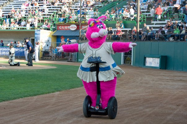 ... pigsegway & How to be a baseball mascot | How to be a mascot